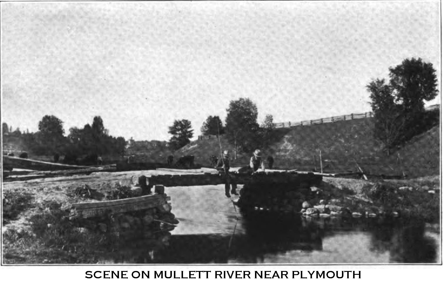 Scene on Mullett River